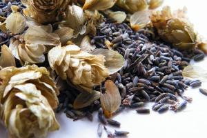 dried lavender hops
